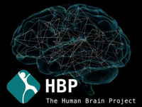 CWI in Human Brain Project