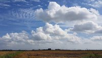 CWI mathematically describes cloud formation